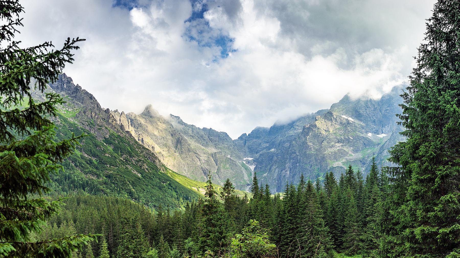 Umwelt Beitragsbild c pixabay